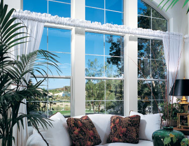 vinyl single hung windows
